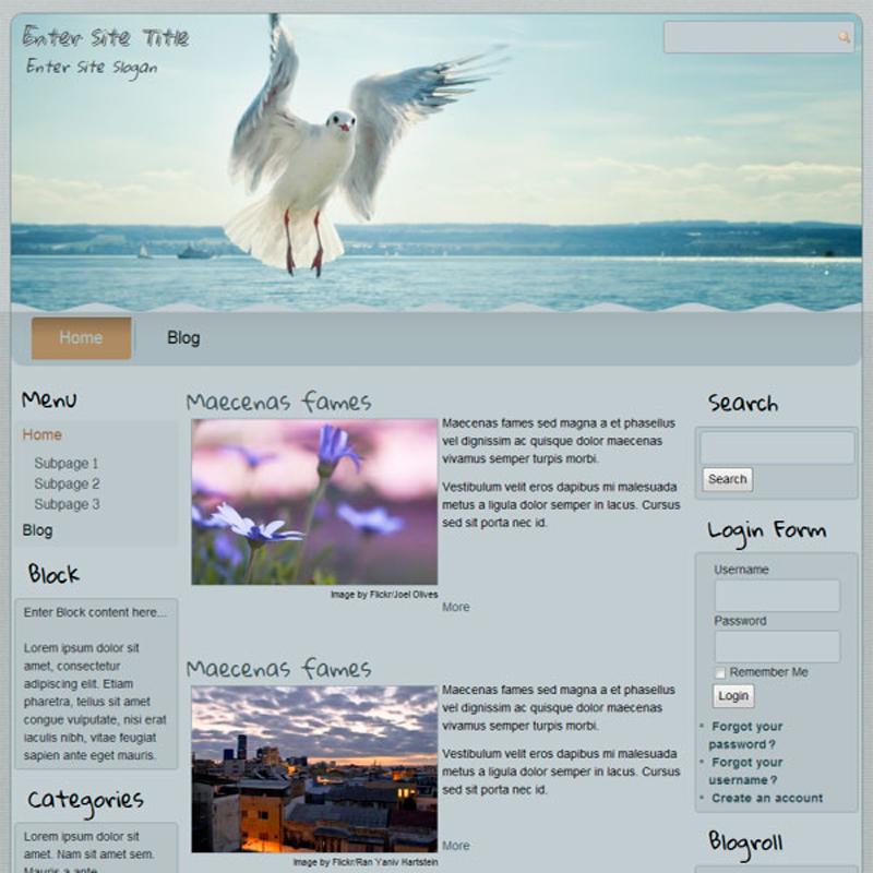 Seagull Theme Example