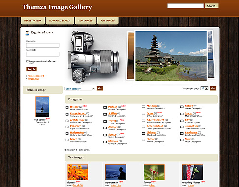4images Theme Example