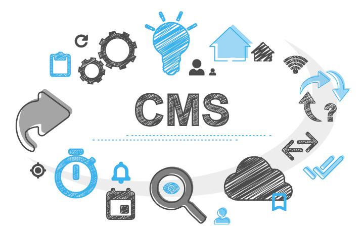 Wordpress oder Drupal: Welches CMS ist besser?