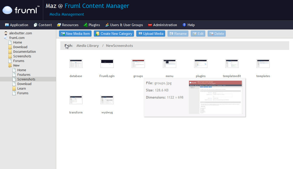 fruml demo preview