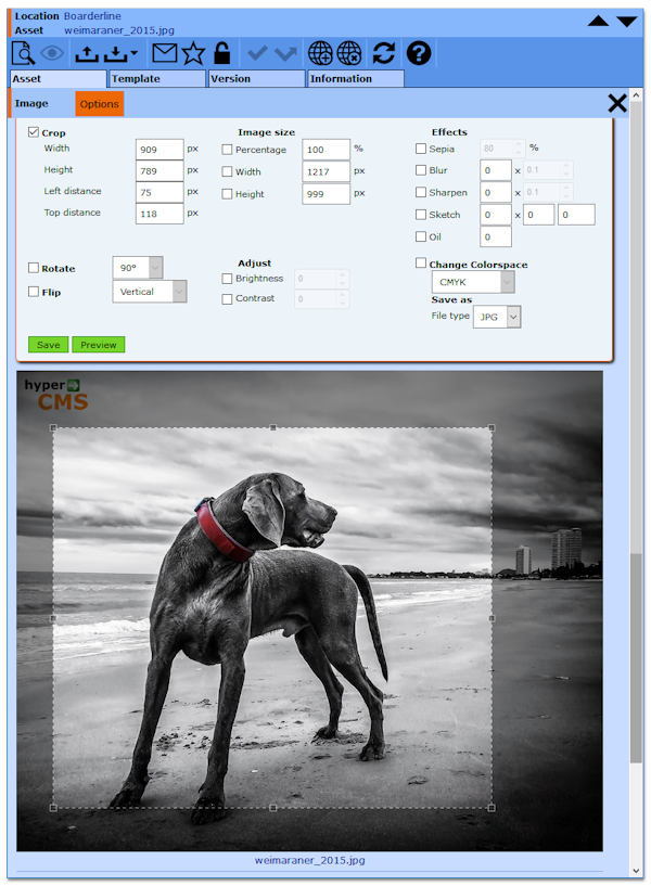 hyperCMS Image Processing